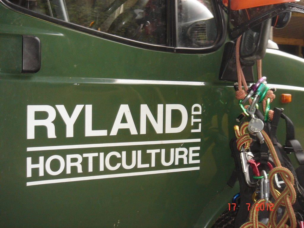 Tree surgeon arboricultural landscapers Ryland Horticulture